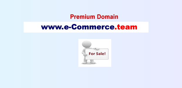 e commerce team