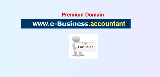 e-business accountant